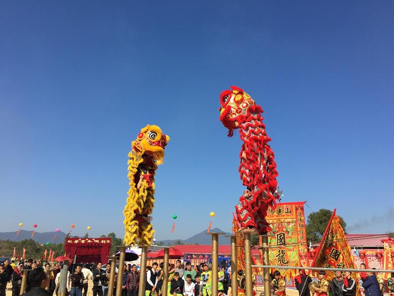 深圳双狮梅花桩表演